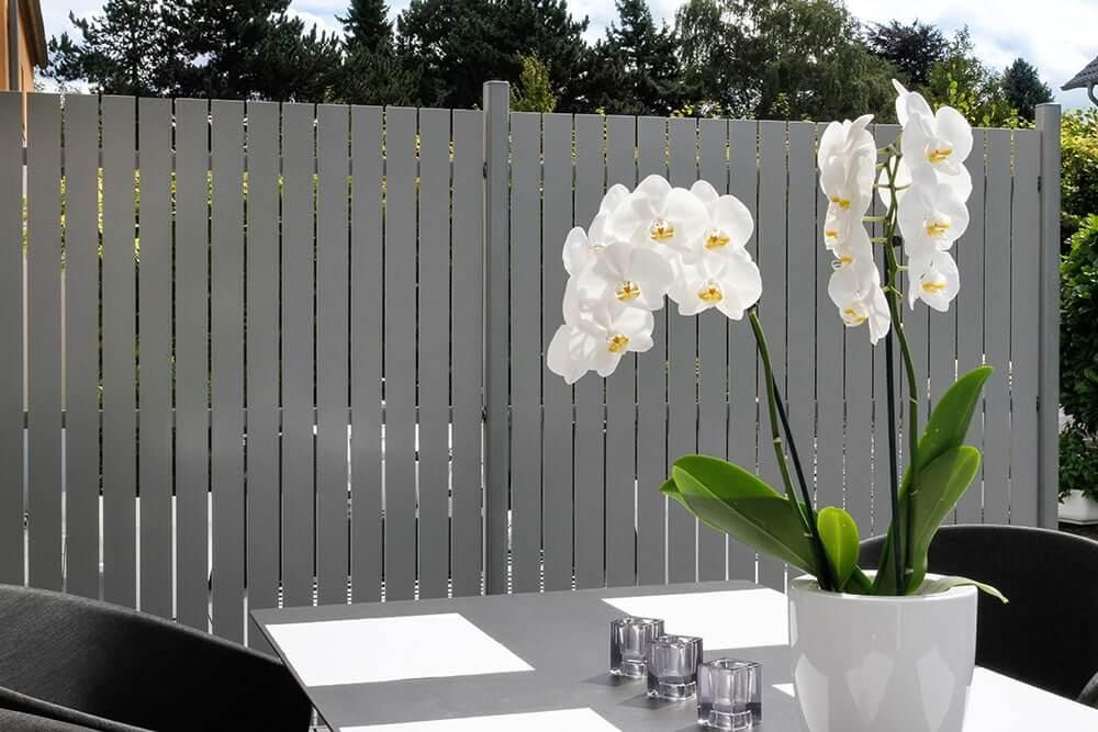 Zaun Metall draußen mit Blume